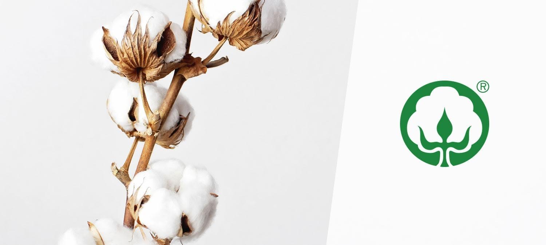 Klassische Baumwolle